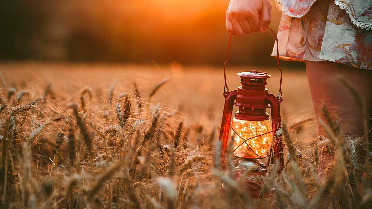 Frauenhand mit Laterne in einem Getreidefeld
