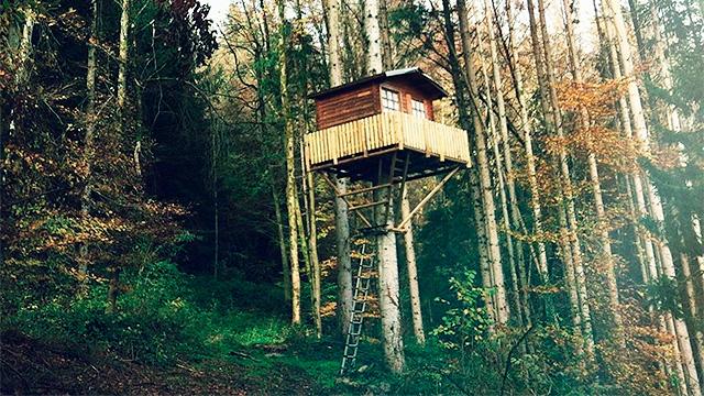 Baumhaus von David Wöhrle